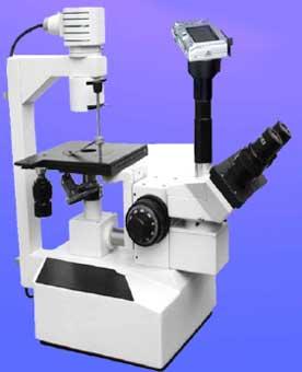 Focus Trinocular Tissue Culture Microscope (TCM-3)