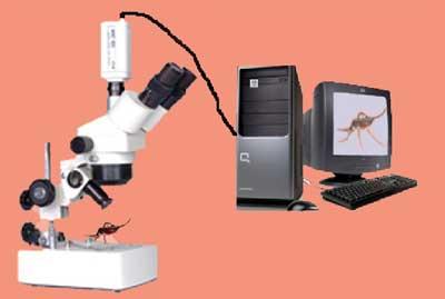 Zoom Stereo Trinocular Microscope