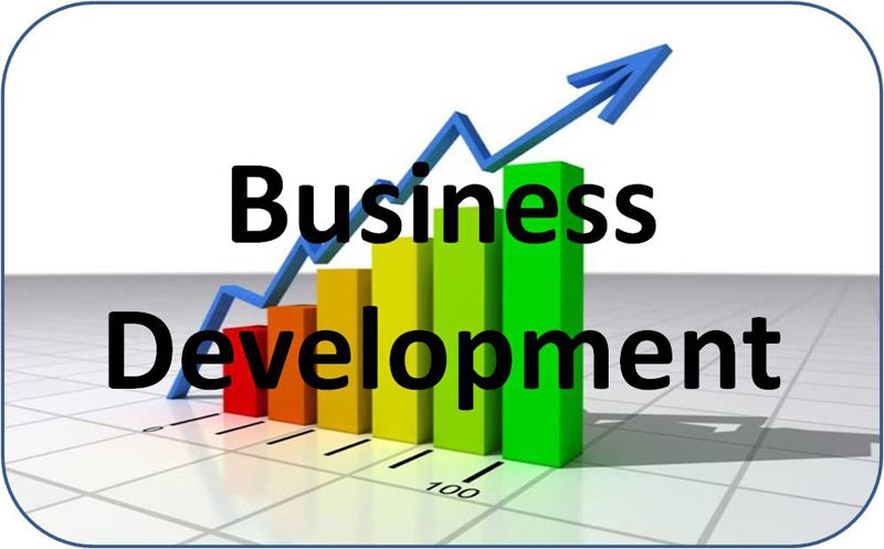 The Worth of Business Development Service for Professional Firms