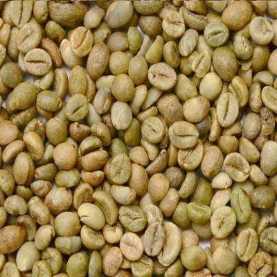 Unwashed Robusta Green Coffee Beans (Screen 13)