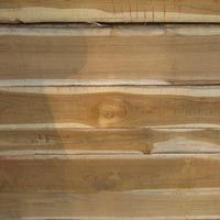 Ivory Coast Teak Wood - 05