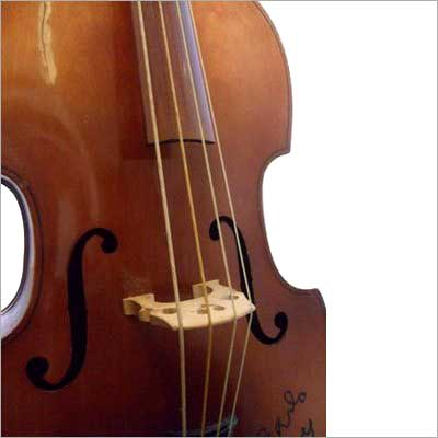 Upright Double Bass Gut Strings
