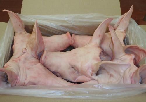 Frozen Pork Head