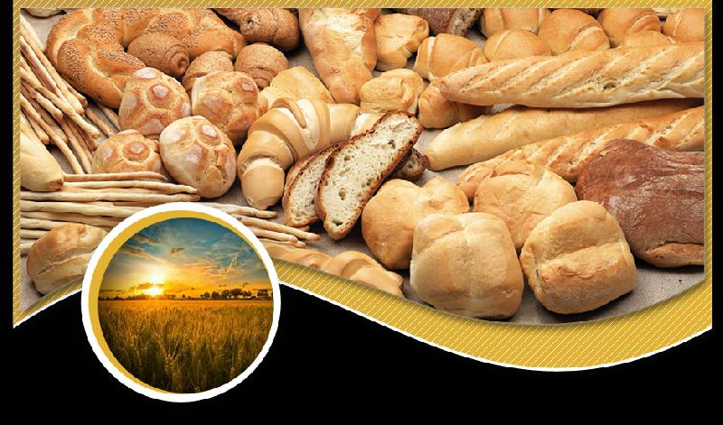 Italian Flour 02