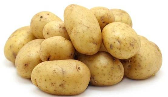 Fresh Vegetables,Fresh Vegetables Suppliers Tamil Nadu