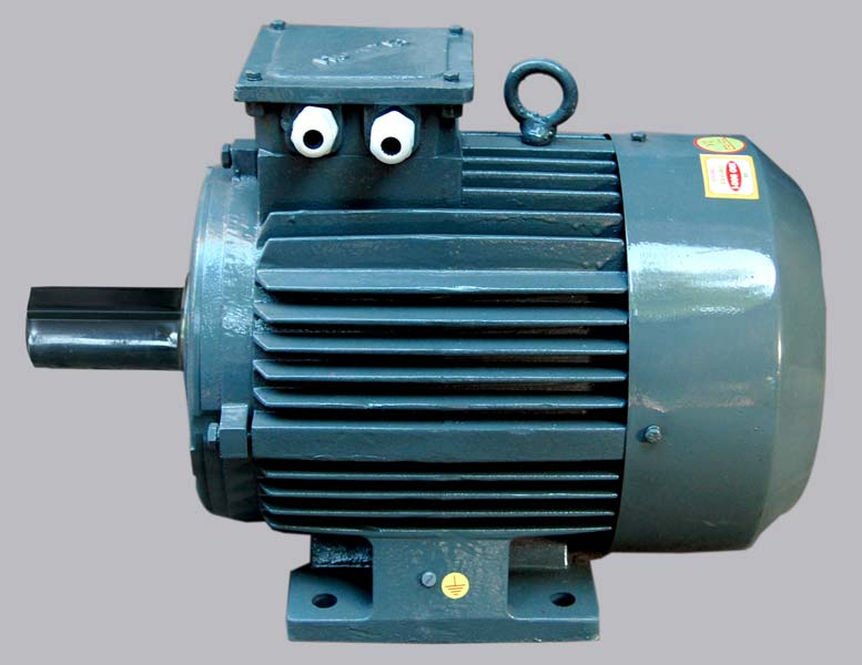 Two Speed Motor Two Speed 3 Phase Electric Motors
