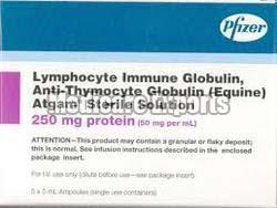 Anti Thymocyte Globulin Solution