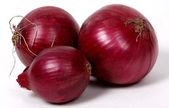 Fresh Onion 02
