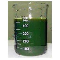 RPO Chemical