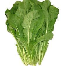 Fresh Roquette Lettuce