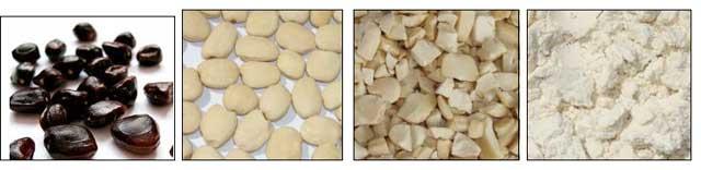Tamarind Seed Kernel Powder