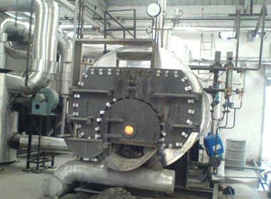 3 Pass Wet Back Boiler