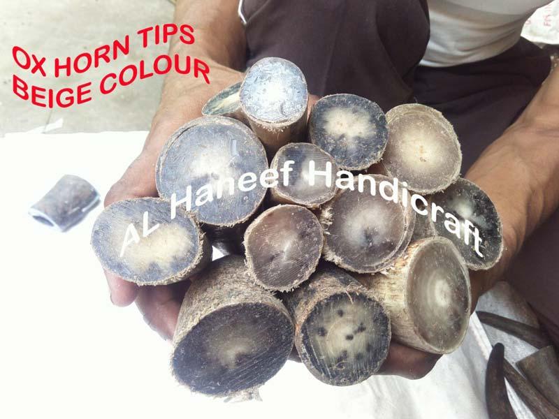 Ox Horn Blank Buttons