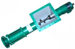 BW Series Screw Pump