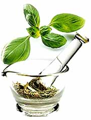 Herbal Extracts Manufacturer