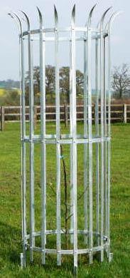 Mild Steel Tree Guard