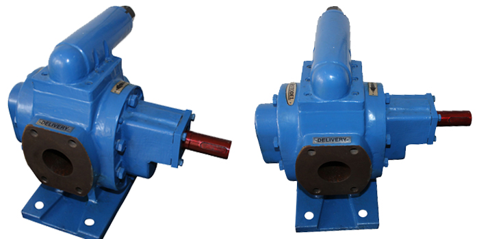 RDBX-RDNX Type Rotary Gear Pump 02