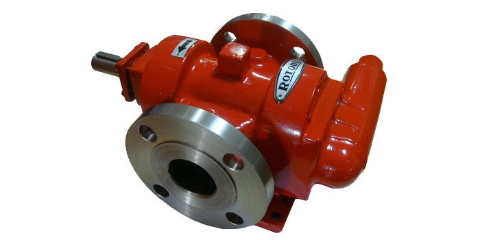 RDMS Type Rotary Gear Pump 05