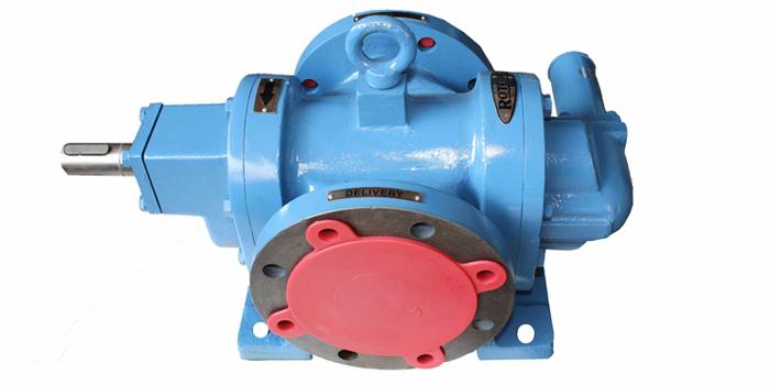 RDRN Type Rotary Gear Pump 02