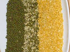 Moong Dal Supplier