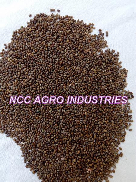 Indigo seeds