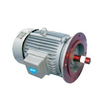Flange Mounted AC Geared Motor
