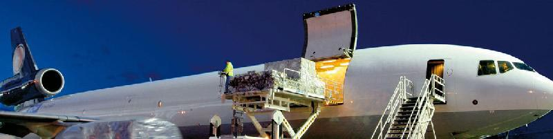 Air Freight Import and Export Services