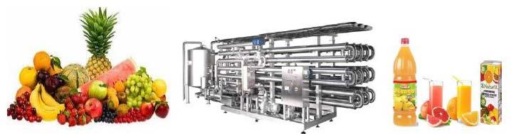 Fruit Juice Processing Machine