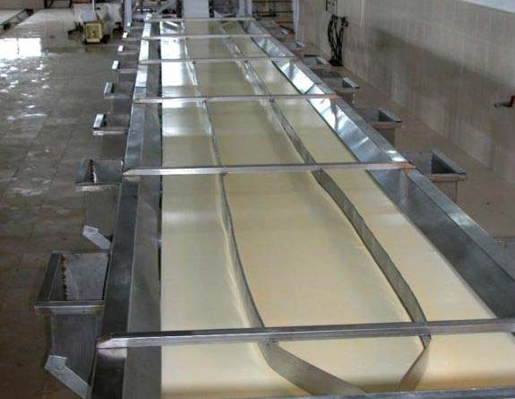 Fruit & Vegetable Inspection Conveyor
