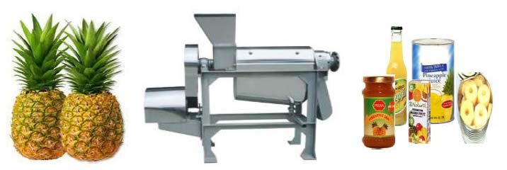 Pineapple Processing Machine
