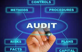 Cyber Security Audit Services