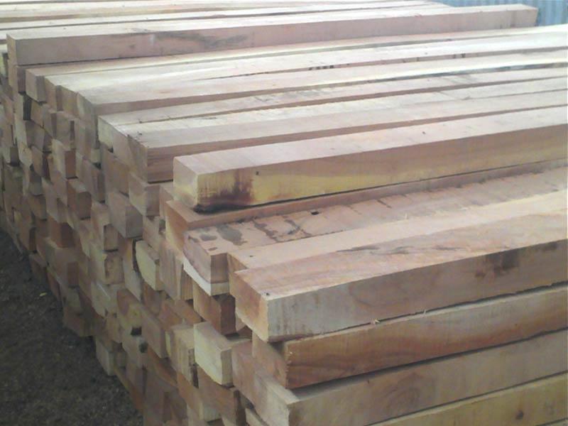 Cut Size Neem Wood