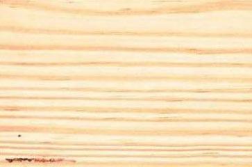 Pine Wood Logs Pine Wood Round Logs Pine Wooden Logs Exporters