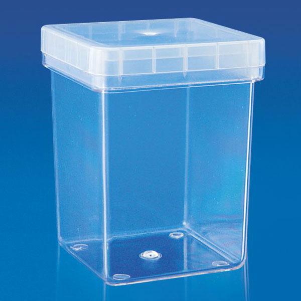 Transparent Magenta Box Plastic Magenta Box Magenta Box