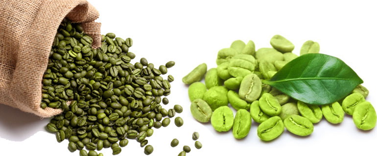 green coffee beans manufacturer,green coffee beans supplier and, Skeleton