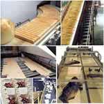 Polyurethane Conveyor Belts