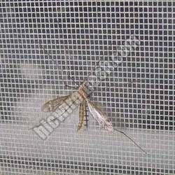 Mosquito Proof Screen 02