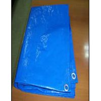 Plastic Tarpaulin (04)