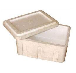Thermocole Ice Box 1