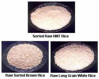 Rice Manufacturer