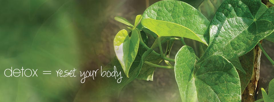 Detoxification Products