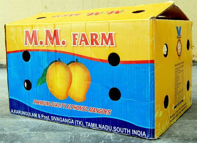 Slotted Carton With Surface Holes