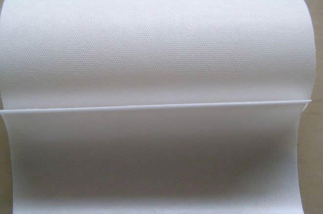 Ping Pong Sheets