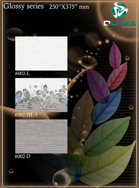 250x375 Glossy Series Wall Tiles