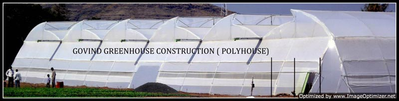 Naturally Ventilated Greenhouse Construction