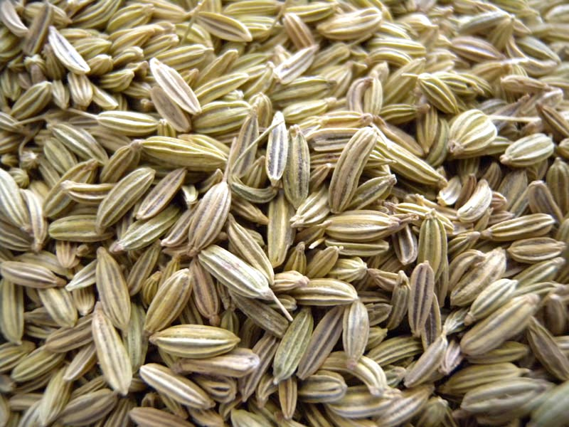 Fennel Seeds in Kannada Fennel Seeds
