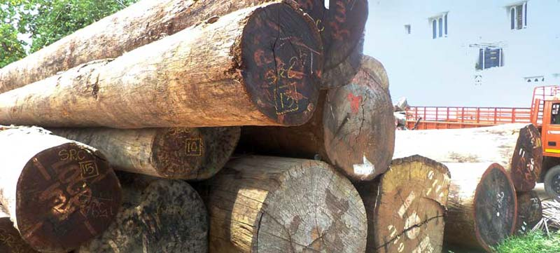 Kwila Wood Logs