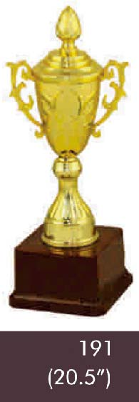 191 20-5 Inches Trophy