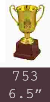 753  06-5 Inches Trophy
