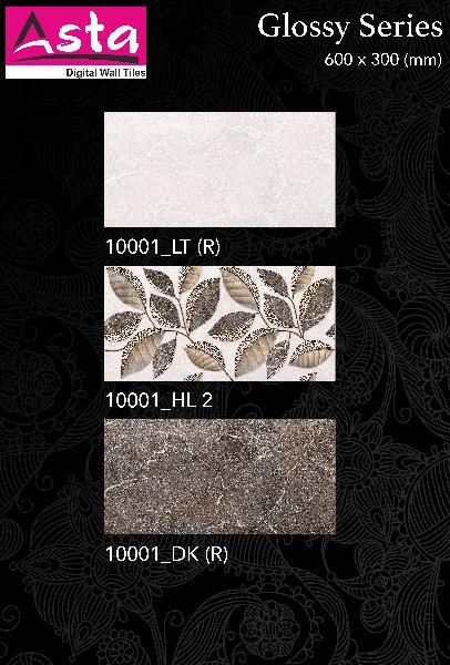 Glossy Series Wall Tiles (30x60)